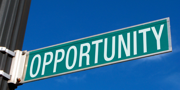 domaining-opportunity