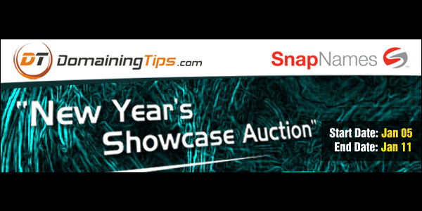domaining-tips-snapnames-auction